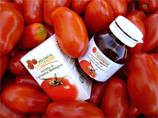 Powerful red Italian tomatoes for our Lycopene. Italian manufacturing suppliers... Italian biological and organic Lycopene designed and made in Italy with the most powerful red tomatoes... Biological lycopene may prevent prostate cancer, heart disease and other forms of cancer... Biological Lycopene manufacturing solutions to the worldwide health care distribution market..
