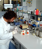 High technology and professional research engineers in our laboratory... Lycopene manufacturing suppliers... Italian biological and organic Lycopene designed and made in Italy with the most powerful red tomatoes... Biological lycopene may prevent prostate cancer, heart disease and other forms of cancer... Biological Lycopene manufacturing solutions to the worldwide health care distribution market..